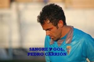 carrigol-rf_577298