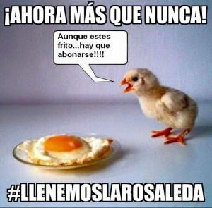 llenemosLaRosaleda2
