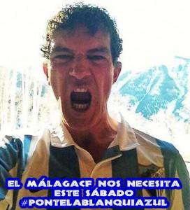 banderas_malaguista